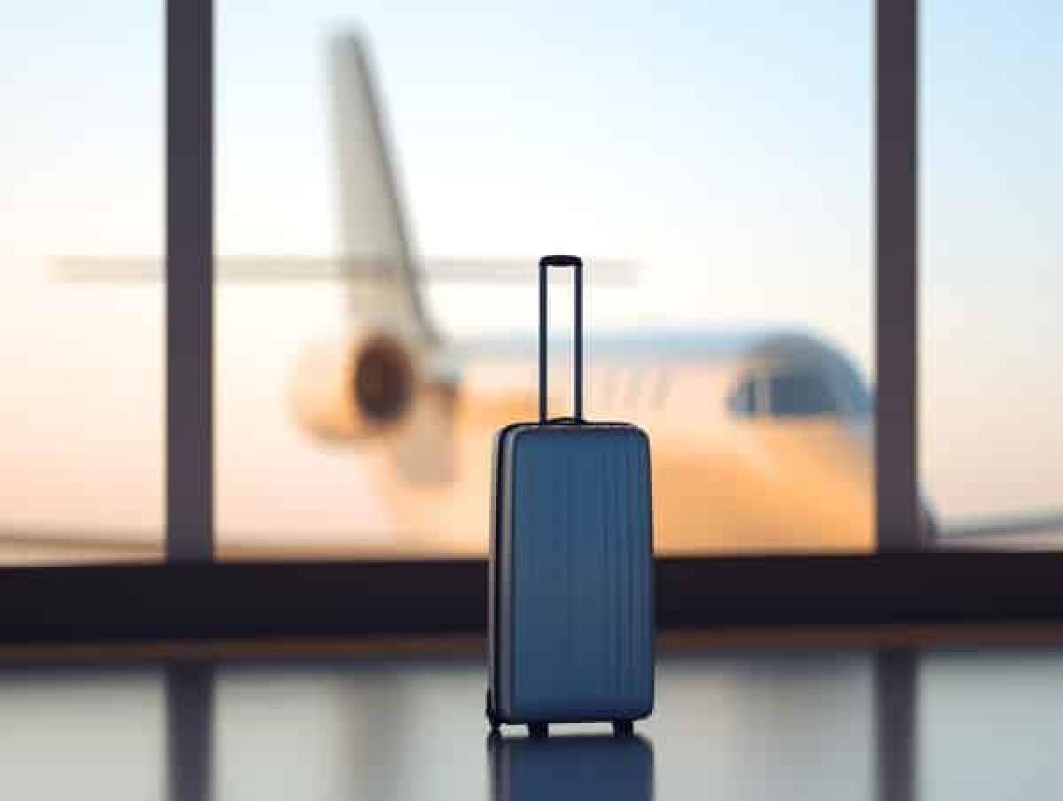 carte famille nombreuse perdue Que faire en cas de valise en soute perdue? Quelles indemnités en
