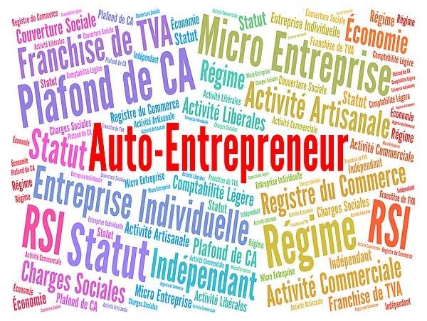 aide coronavirus auto entrepreneur